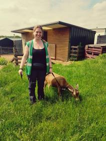 Yes, walking goats is actually a thing!